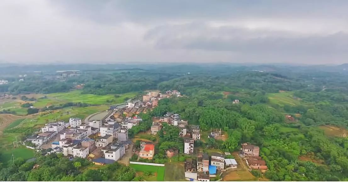 ▲曾经闭塞的西塘村,凭借乡村振兴战略重新焕发新机。
